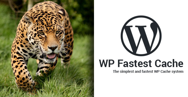 How to Setup WP Fastest Cache Plugin